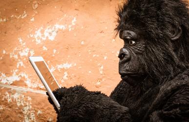 wat is gorillaglas, verschil gorillaglas en tempered glass